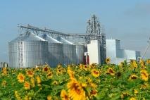 Звернення до українських аграріїв